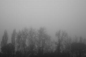 still-life_04